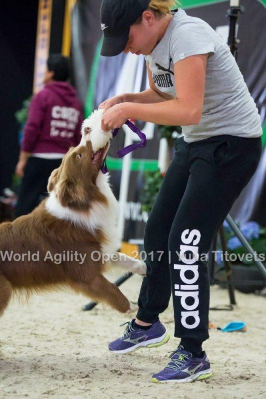 Chi Siamo - Agility Dog Terni