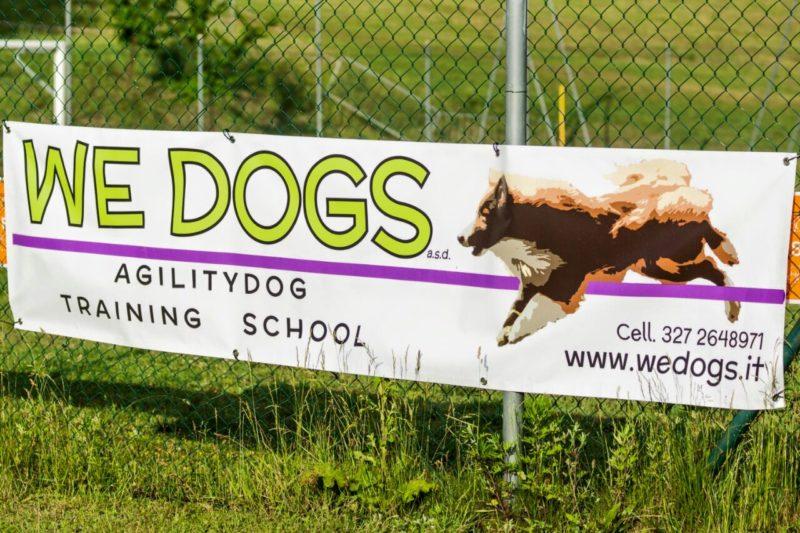 Agility Dog Educazione Cinofila Addestramento Cani - Terni
